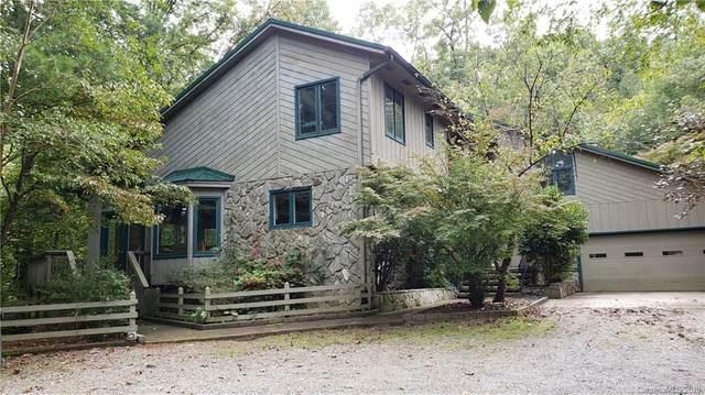 124 Moss Hill Lane, Lake Lure, NC 28746 (#3667439) :: SearchCharlotte.com