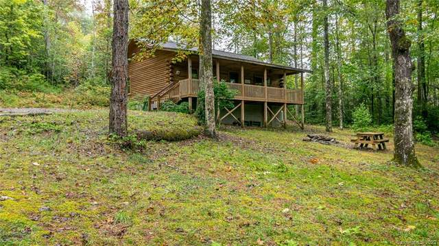 10401 Greenville Highway, Cedar Mountain, NC 28718 (#3667450) :: Keller Williams Professionals