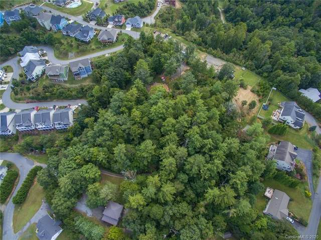45 Avery Nicole Drive, Weaverville, NC 28787 (#3667687) :: Carlyle Properties