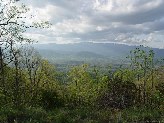 829 Table Rock Road #829, Old Fort, NC 28762 (#3667739) :: LePage Johnson Realty Group, LLC