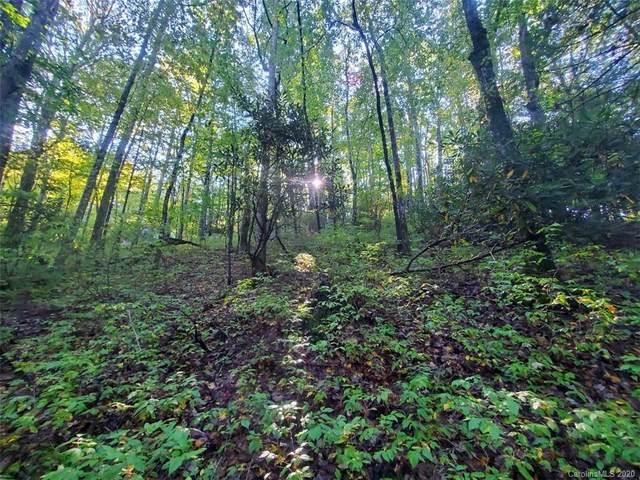 TBD Usdasdi Drive U21/L44, Brevard, NC 28712 (#3668406) :: Exit Realty Vistas