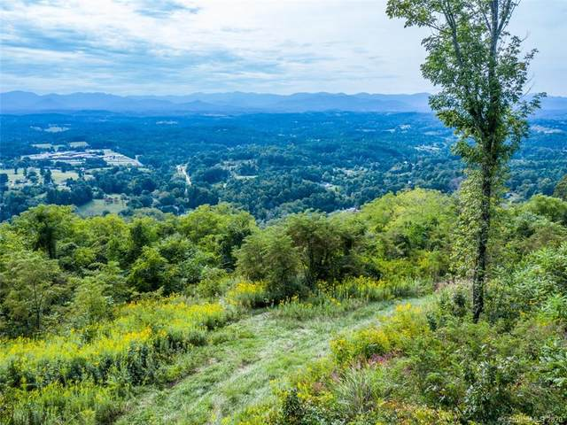 0 King Road, Weaverville, NC 28787 (#3668431) :: MOVE Asheville Realty