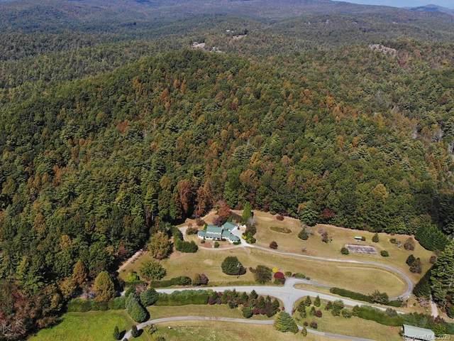 605 Reasonover Road, Cedar Mountain, NC 28718 (#3670649) :: Keller Williams Professionals