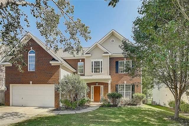 2028 White Cedar Lane, Waxhaw, NC 28173 (#3670696) :: High Performance Real Estate Advisors