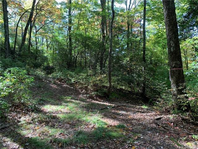 Lot 28 Big Hill Road #28, Brevard, NC 28712 (#3671082) :: The Elite Group