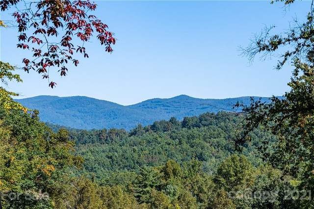 9999 Bishop Cove, Fairview, NC 28730 (#3671148) :: MOVE Asheville Realty
