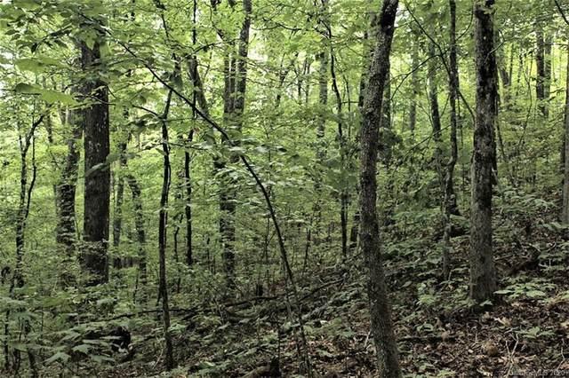 00 Battle Branch Road, Bryson City, NC 28713 (#3671371) :: LePage Johnson Realty Group, LLC