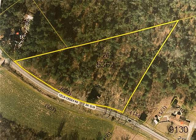 TBD Celia Creek Road, Lenoir, NC 28645 (#3671953) :: Scarlett Property Group