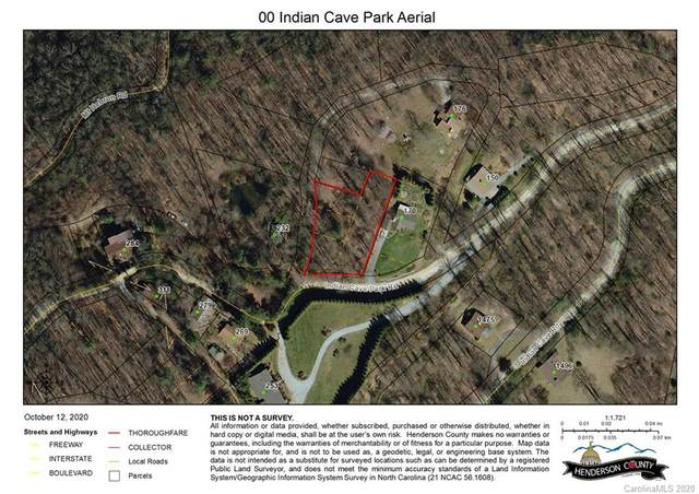 0000 Indian Cave Park Road, Hendersonville, NC 28739 (#3672053) :: The Mitchell Team