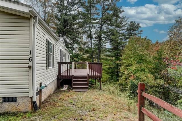 16 Molly Lane, Candler, NC 28715 (#3672300) :: High Performance Real Estate Advisors