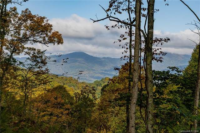 299 High Hickory Trail #32, Swannanoa, NC 28778 (#3672334) :: High Performance Real Estate Advisors