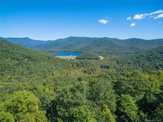 6 Evergreen Drive, Black Mountain, NC 28711 (#3672474) :: The Mitchell Team