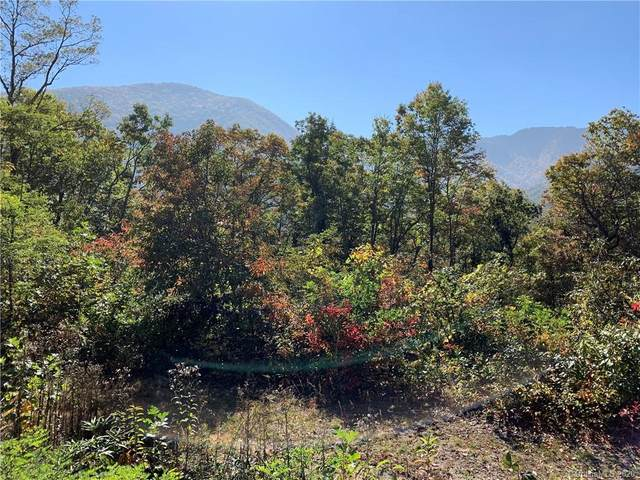 Lot 105 Splendor Heights, Maggie Valley, NC 28751 (#3672856) :: Exit Realty Vistas