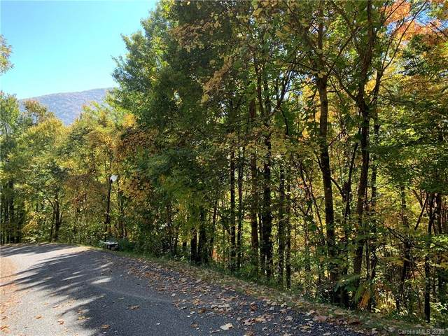 Lot 113 Davy Crockett Drive, Maggie Valley, NC 28751 (MLS #3672861) :: RE/MAX Journey