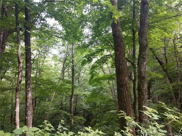 TBD Left Fork Run Road #34, Bakersville, NC 28705 (#3673092) :: Willow Oak, REALTORS®