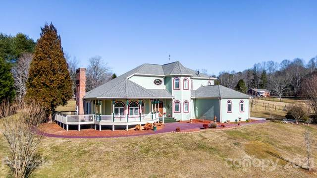 282 Ray Hill Road, Mills River, NC 28759 (#3673422) :: Homes Charlotte