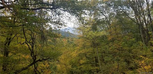 Lot 286 Running Deer Trail, Waynesville, NC 28786 (#3673452) :: Cloninger Properties