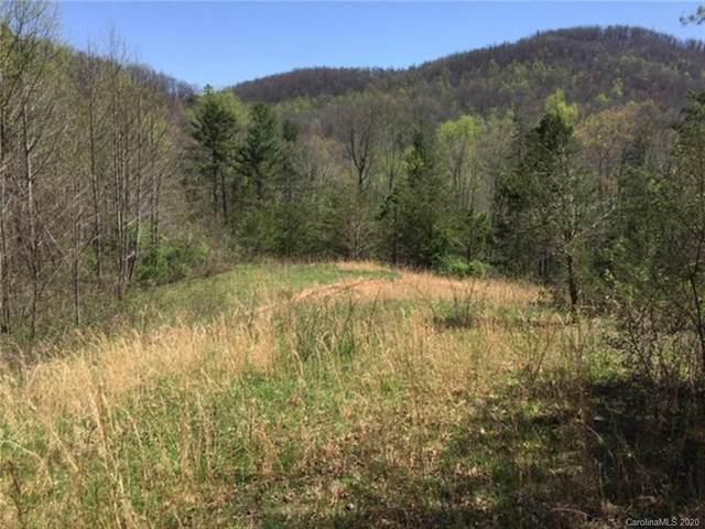 0 Gap Creek Road, Zirconia, NC 28790 (#3673454) :: TeamHeidi®