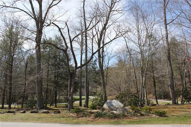 8 Laurel Branch Drive, Black Mountain, NC 28711 (#3673637) :: The Mitchell Team