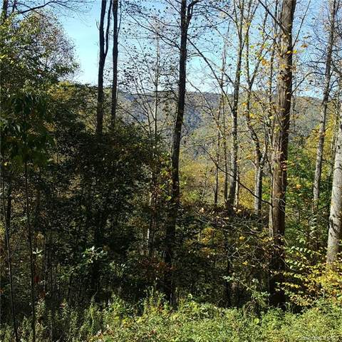 28 Appaloosa Trail, Waynesville, NC 28785 (#3673797) :: The Elite Group