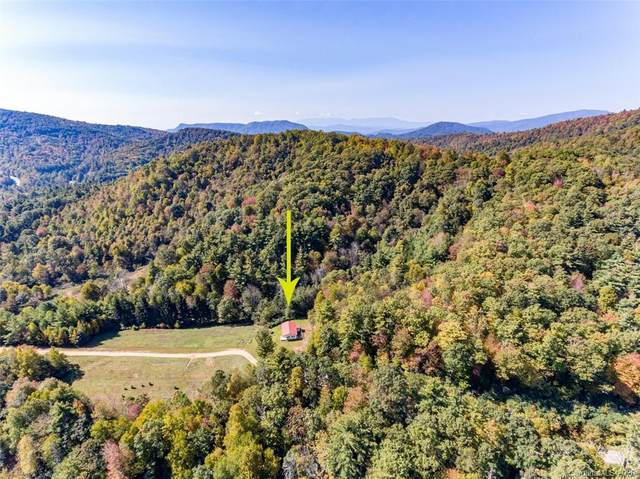 9000 Bugger Hollow Avenue, Newland, NC 28657 (#3673981) :: LePage Johnson Realty Group, LLC
