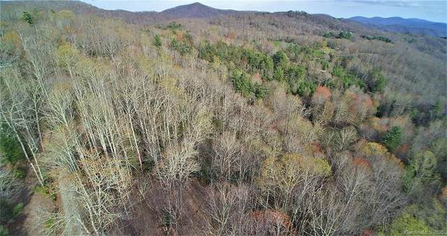 0 Back Country Road, Tuckasegee, NC 28783 (#3674041) :: Mossy Oak Properties Land and Luxury