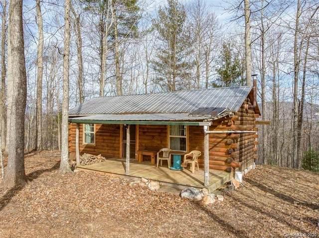 177 Black Mountain View, Spruce Pine, NC 28777 (#3674321) :: LePage Johnson Realty Group, LLC