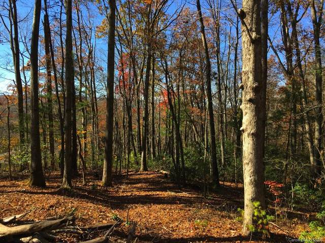 Lot w1 Curtain Bluff, Hendersonville, NC 28791 (#3674419) :: Charlotte Home Experts