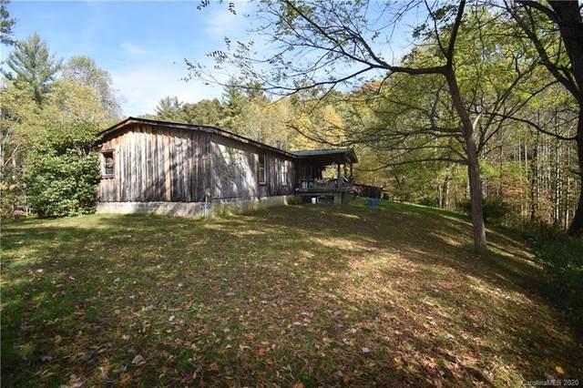 46 Meadow Fork School Road, Hot Springs, NC 28743 (#3674660) :: Ann Rudd Group