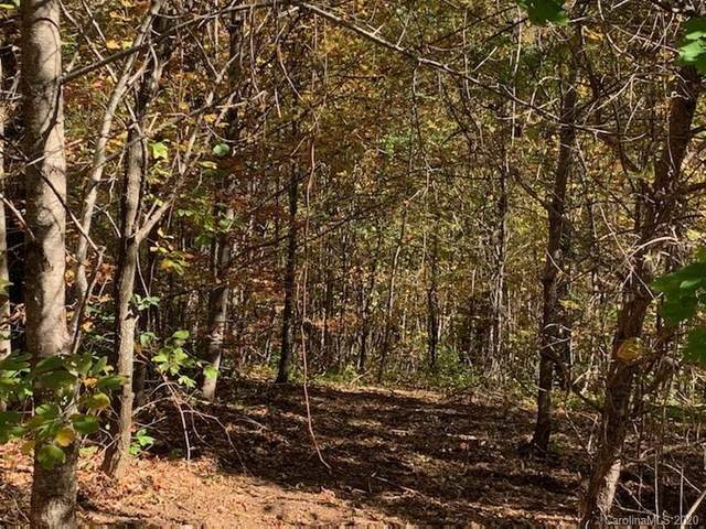 Lot 69 Grand Oaks Drive, Hendersonville, NC 28792 (#3674710) :: Ann Rudd Group