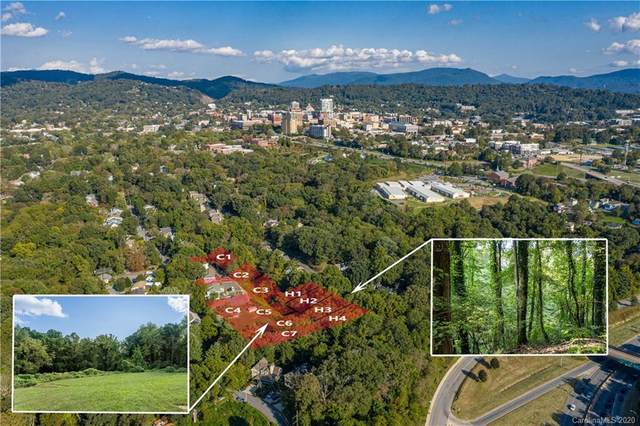 143 Courtland Avenue, Asheville, NC 28801 (#3674736) :: Homes with Keeley | RE/MAX Executive