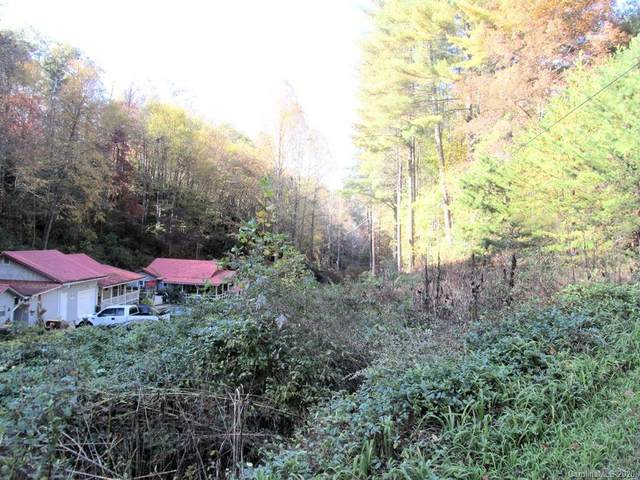 0 Cougar Lane, Whittier, NC 28789 (#3674822) :: Mossy Oak Properties Land and Luxury