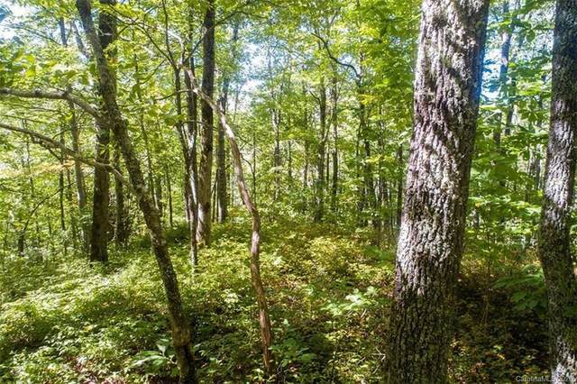 Lot #238 Crossvine Drive #238, Tuckasegee, NC 28783 (#3674884) :: Mossy Oak Properties Land and Luxury