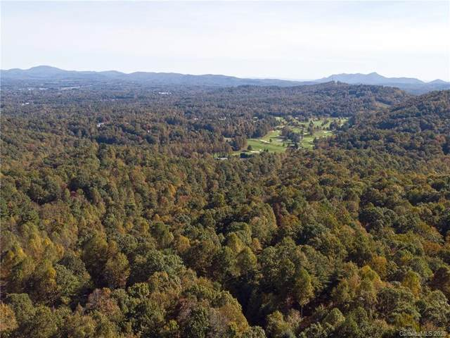 99999 Greenleaf Drive, Flat Rock, NC 28731 (#3674902) :: LePage Johnson Realty Group, LLC