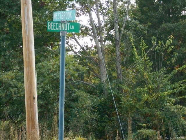 175 Beechnut Lane, Statesville, NC 28677 (#3675040) :: LePage Johnson Realty Group, LLC