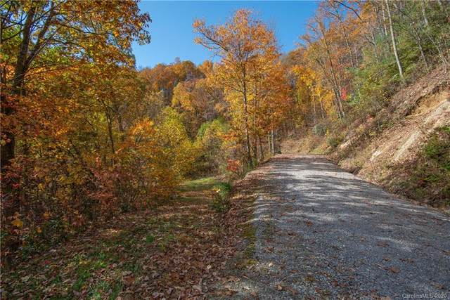 Tract 3 Sigogglin Trail, Waynesville, NC 28785 (#3675237) :: Besecker Homes Team