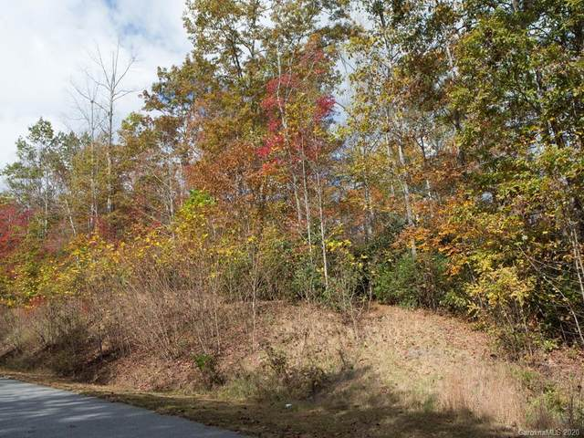 53 New Castle Road, Brevard, NC 28712 (#3675877) :: BluAxis Realty