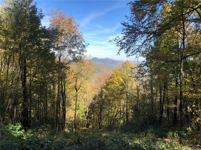 Lot 232 Tannehill Lane #232, Waynesville, NC 28786 (#3676119) :: MartinGroup Properties