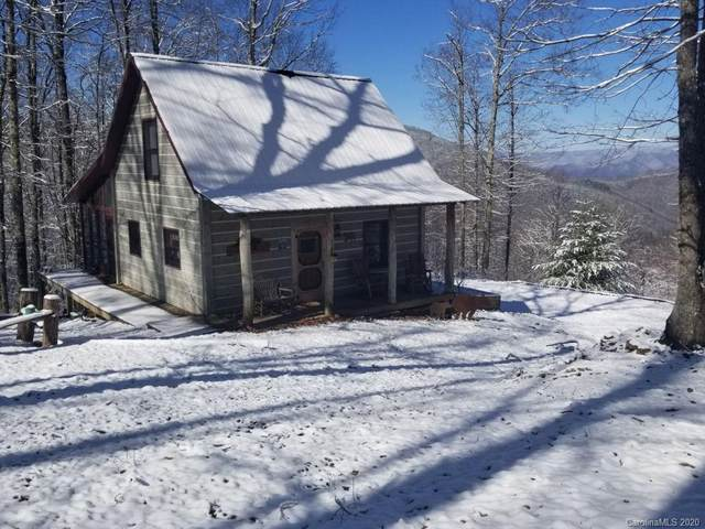 2630 Conley Mountain Association Road, Whittier, NC 28789 (#3676483) :: Homes Charlotte