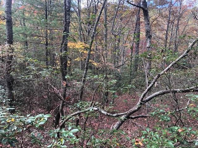 Lot 5 Oriole Road #5, Brevard, NC 28712 (#3676539) :: MartinGroup Properties