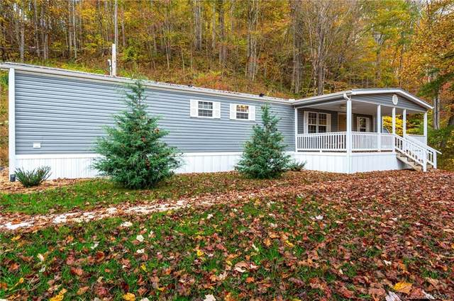 1903 Old Mountain Road, Mars Hill, NC 28754 (#3676664) :: Homes with Keeley | RE/MAX Executive