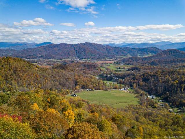 438 Dorchester Road, Waynesville, NC 28785 (#3677075) :: Mossy Oak Properties Land and Luxury