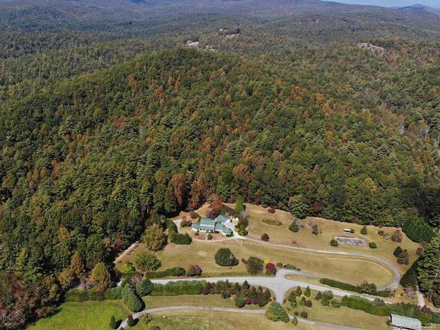 605 Reasonover Road, Cedar Mountain, NC 28718 (#3677272) :: Keller Williams Professionals