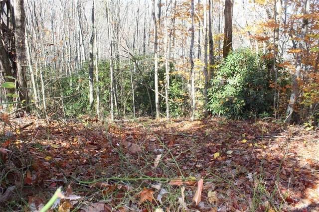 0 Hickory Nut Gap Road, Banner Elk, NC 28604 (#3677304) :: Caulder Realty and Land Co.