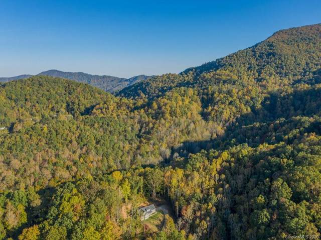 9999 Newfound Road, Leicester, NC 28748 (#3677316) :: MOVE Asheville Realty