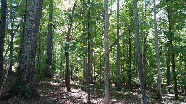 55 AC Balmoral Drive, Rock Hill, SC 29732 (#3677464) :: Robert Greene Real Estate, Inc.
