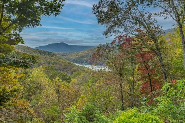 741 South Drive, Lake Lure, NC 28746 (#3677467) :: Love Real Estate NC/SC