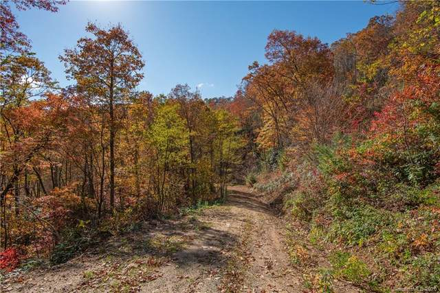 Tract 17 Sigogglin Trail, Waynesville, NC 28785 (#3678036) :: Keller Williams Professionals