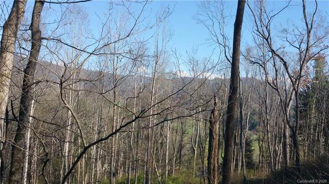 230 Shining Rock Path, Mills River, NC 28742 (#3678405) :: Ann Rudd Group