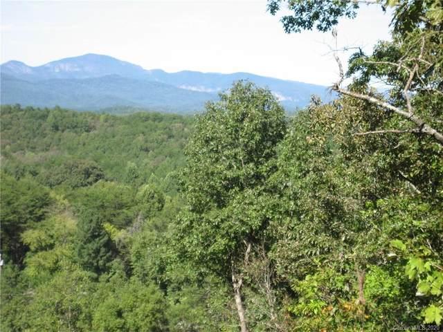 000 Silver Creek Road, Mill Spring, NC 28756 (#3678577) :: TeamHeidi®